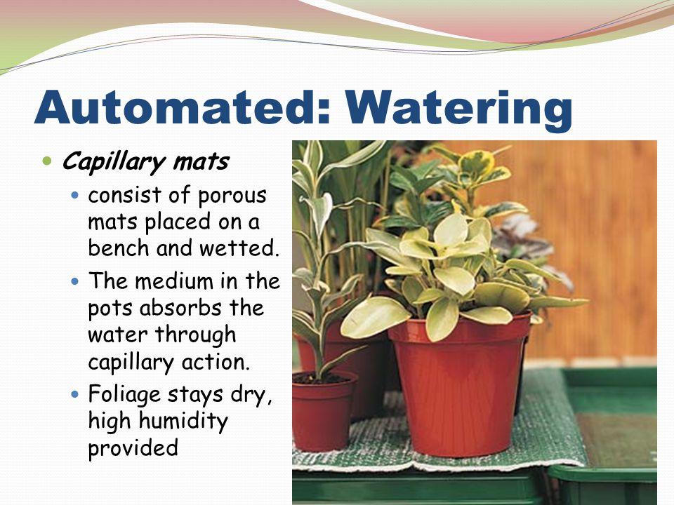 Automated: Watering Capillary mats