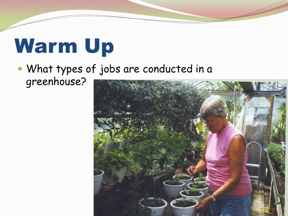 Warm Up What types of jobs are conducted in a greenhouse