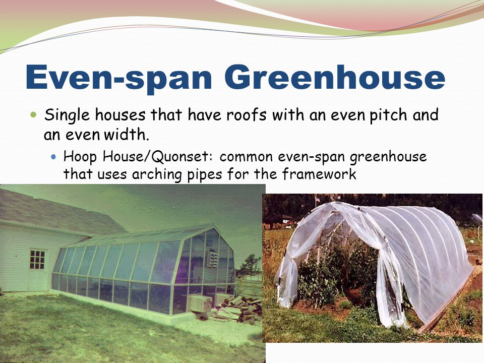 Even-span Greenhouse Single houses that have roofs with an even pitch and an even width.