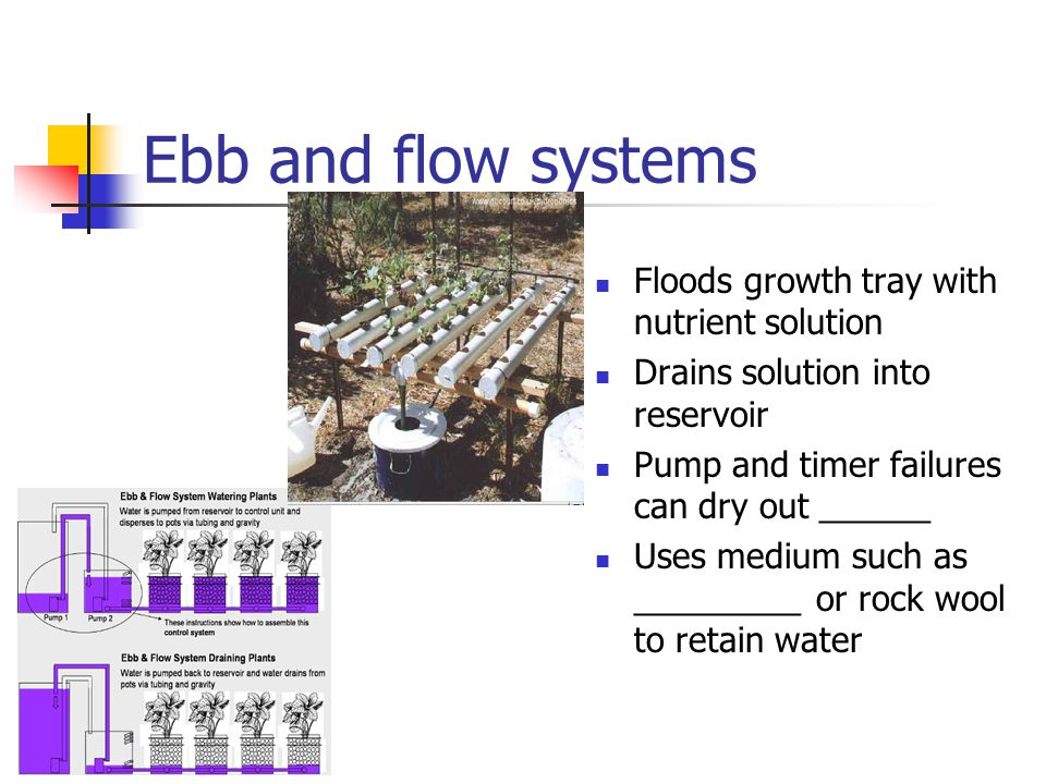 Ebb and flow systems Floods growth tray with nutrient solution