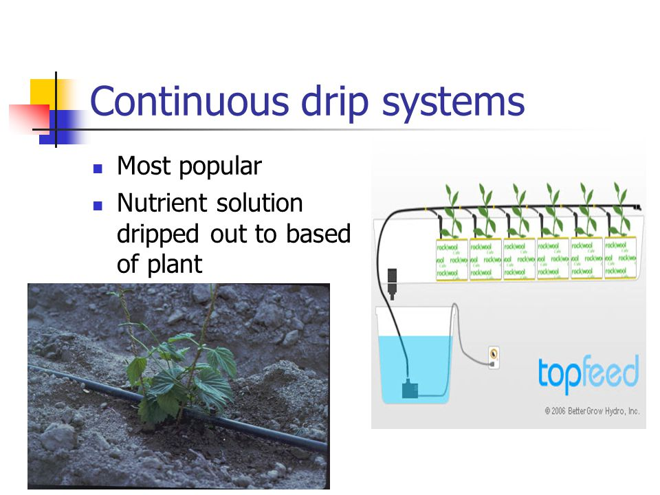 Continuous drip systems