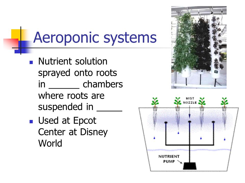 Aeroponic systems Nutrient solution sprayed onto roots in ______ chambers where roots are suspended in _____.