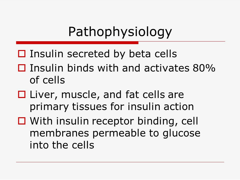 Pathophysiology Insulin secreted by beta cells