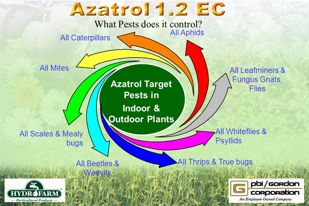 Azatrol Target Pests in Indoor & Outdoor Plants