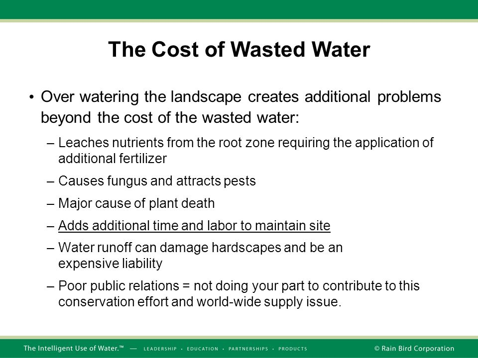 The Cost of Wasted Water