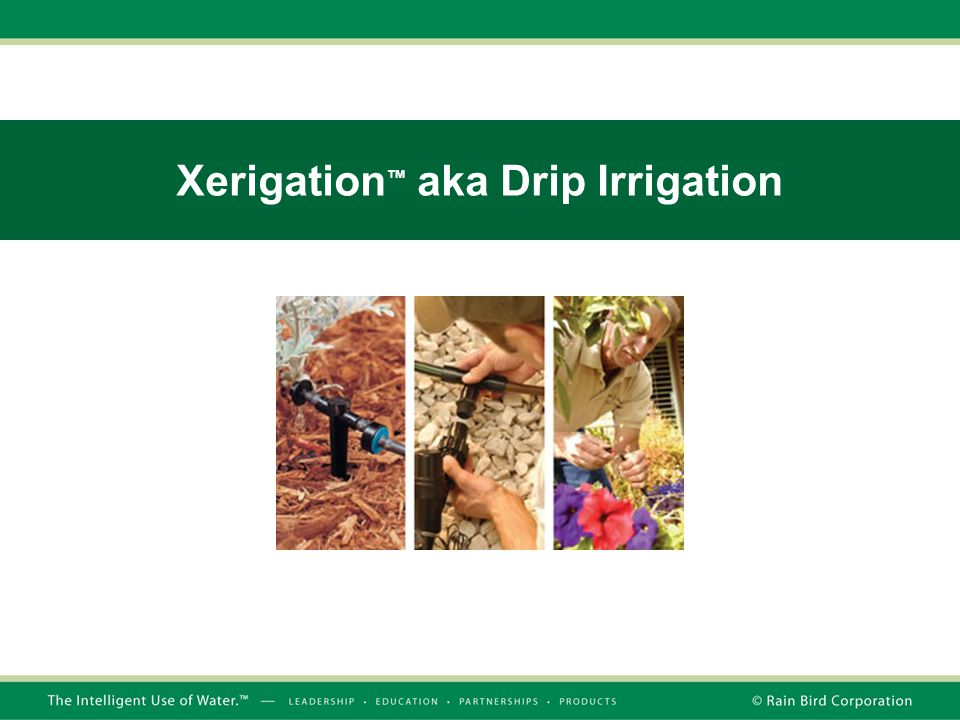 Xerigation™ aka Drip Irrigation