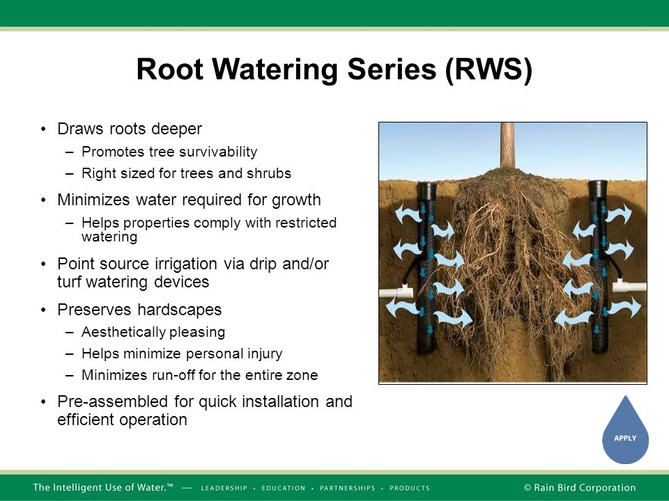 Root Watering Series (RWS)