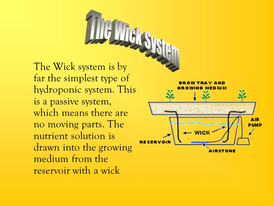 The Wick System