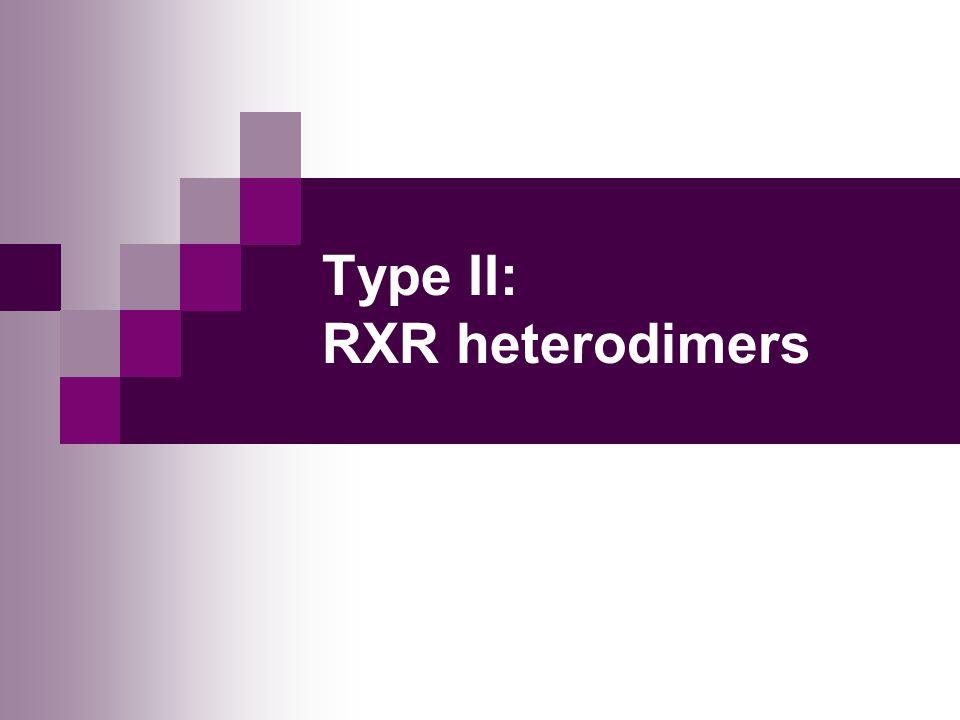Type II: RXR heterodimers