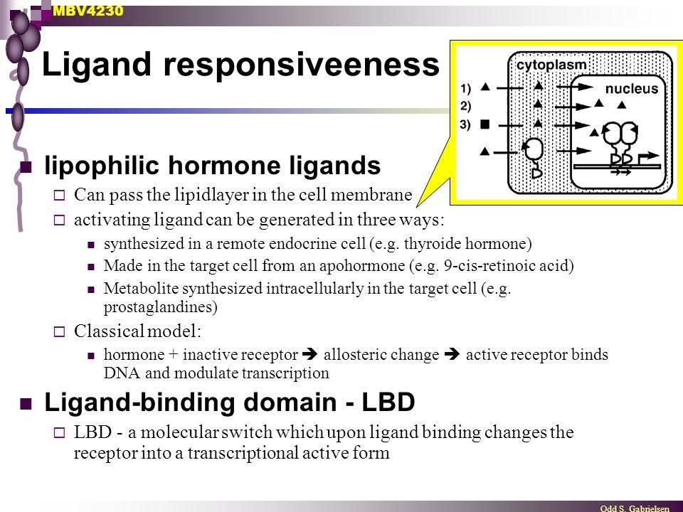 Ligand responsiveeness