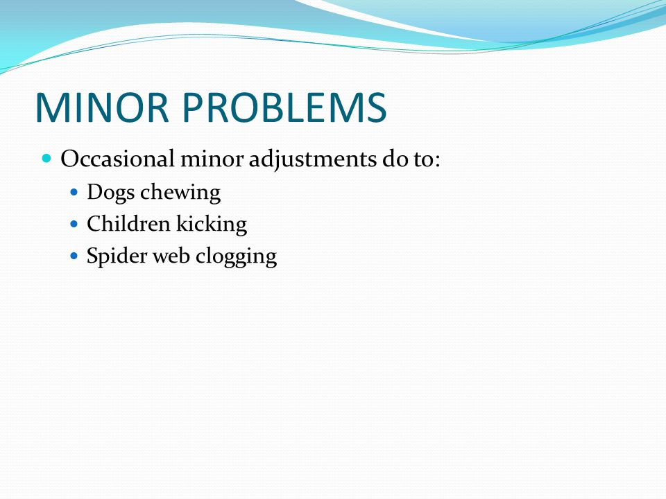 MINOR PROBLEMS Occasional minor adjustments do to: Dogs chewing