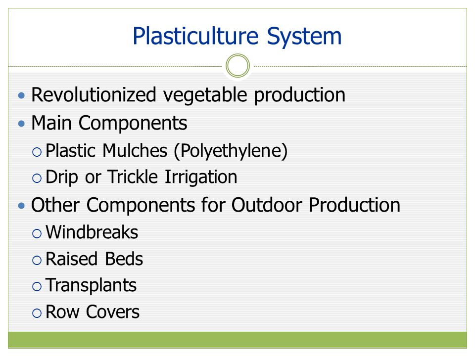 Plasticulture System Revolutionized vegetable production