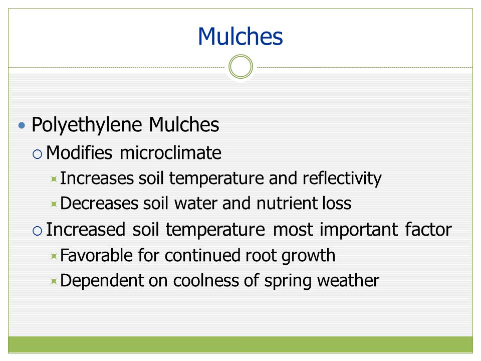 Mulches Polyethylene Mulches Modifies microclimate