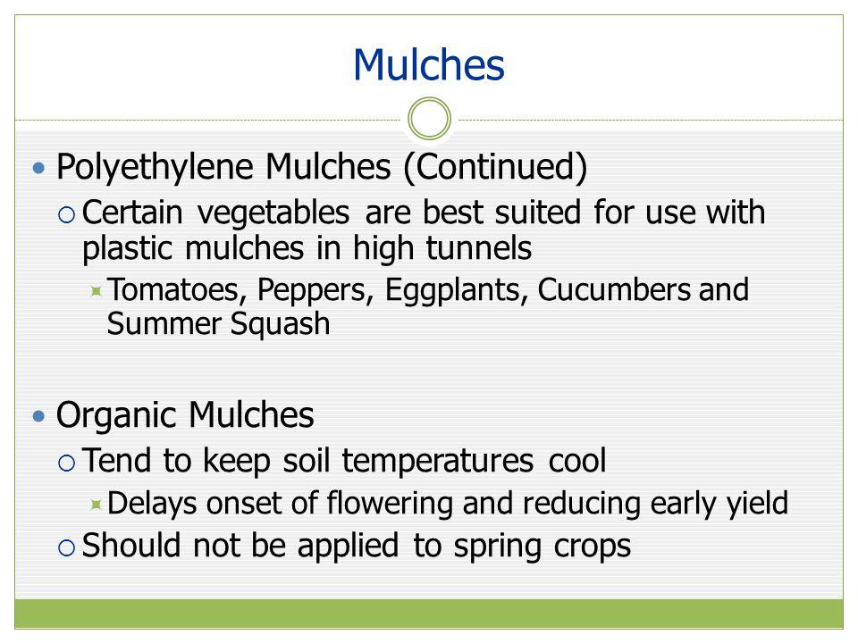 Mulches Polyethylene Mulches (Continued) Organic Mulches