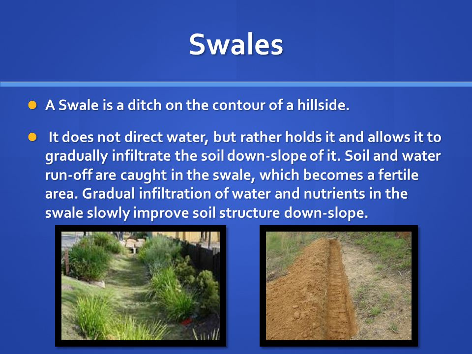 Swales A Swale is a ditch on the contour of a hillside.