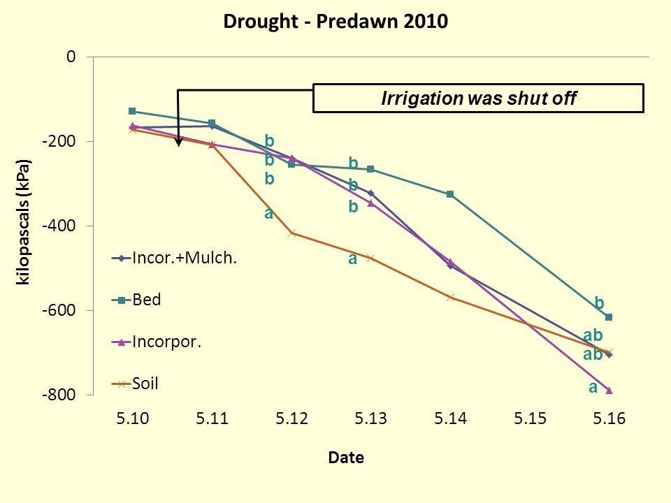 Irrigation was shut off