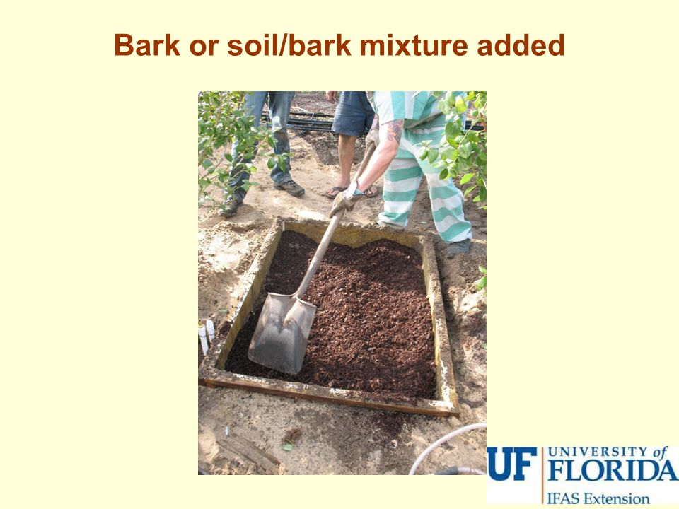 Bark or soil/bark mixture added