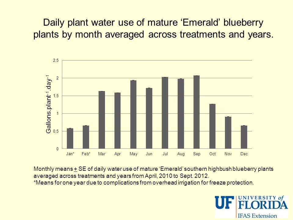 Daily plant water use of mature 'Emerald' blueberry