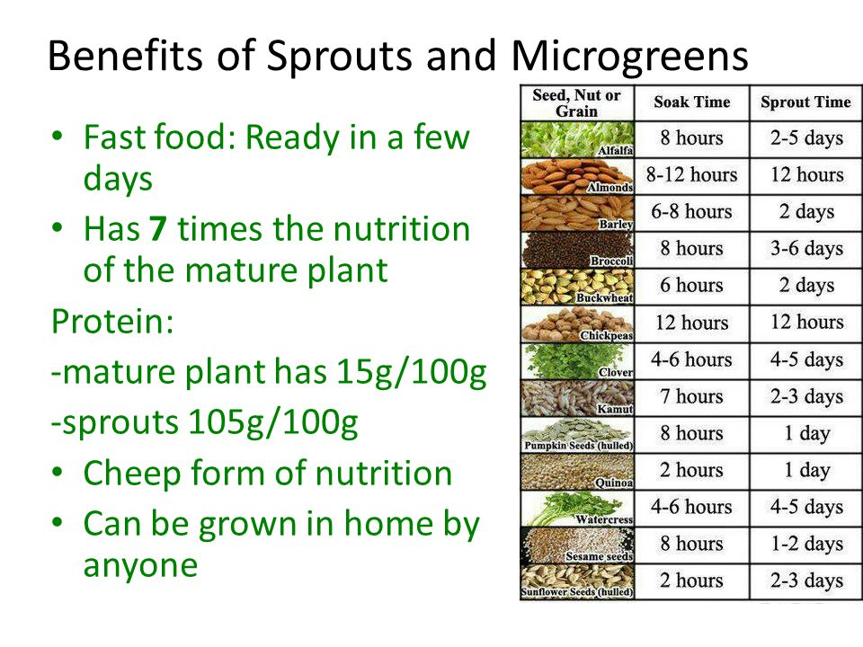 Benefits of Sprouts and Microgreens