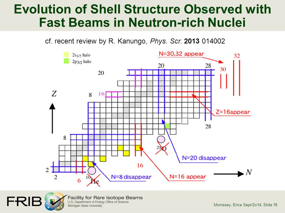 Evolution of Shell Structure Observed with Fast Beams in Neutron-rich Nuclei
