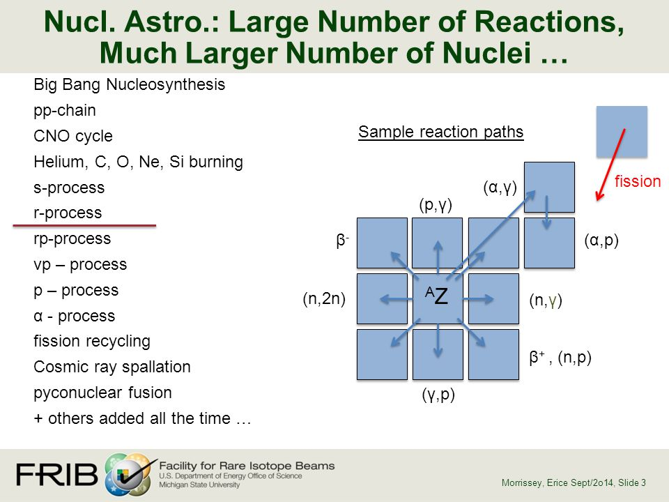 Nucl. Astro.: Large Number of Reactions, Much Larger Number of Nuclei …