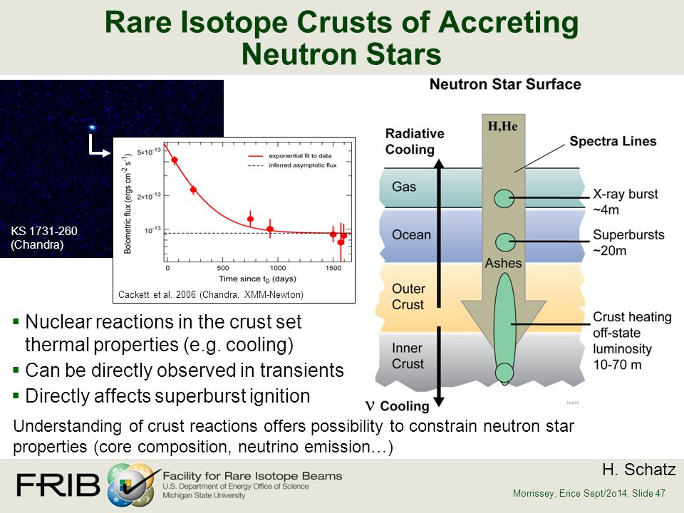 Rare Isotope Crusts of Accreting Neutron Stars