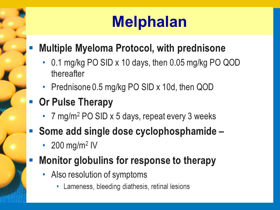 Melphalan Multiple Myeloma Protocol, with prednisone Or Pulse Therapy