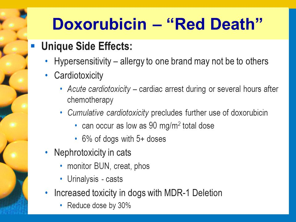 Doxorubicin – Red Death