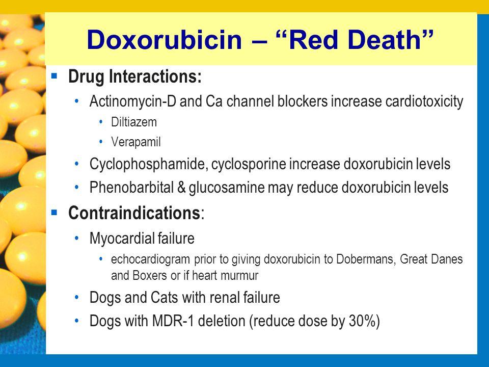 Doxorubicin – Red Death