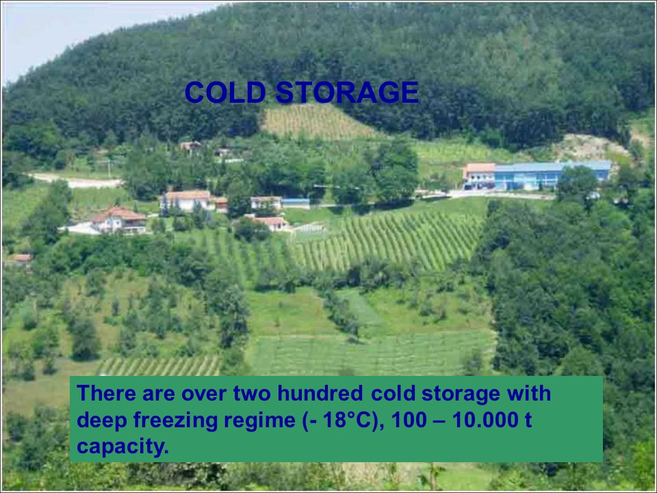 COLD STORAGE There are over two hundred cold storage with deep freezing regime (- 18°C), 100 – 10.000 t capacity.