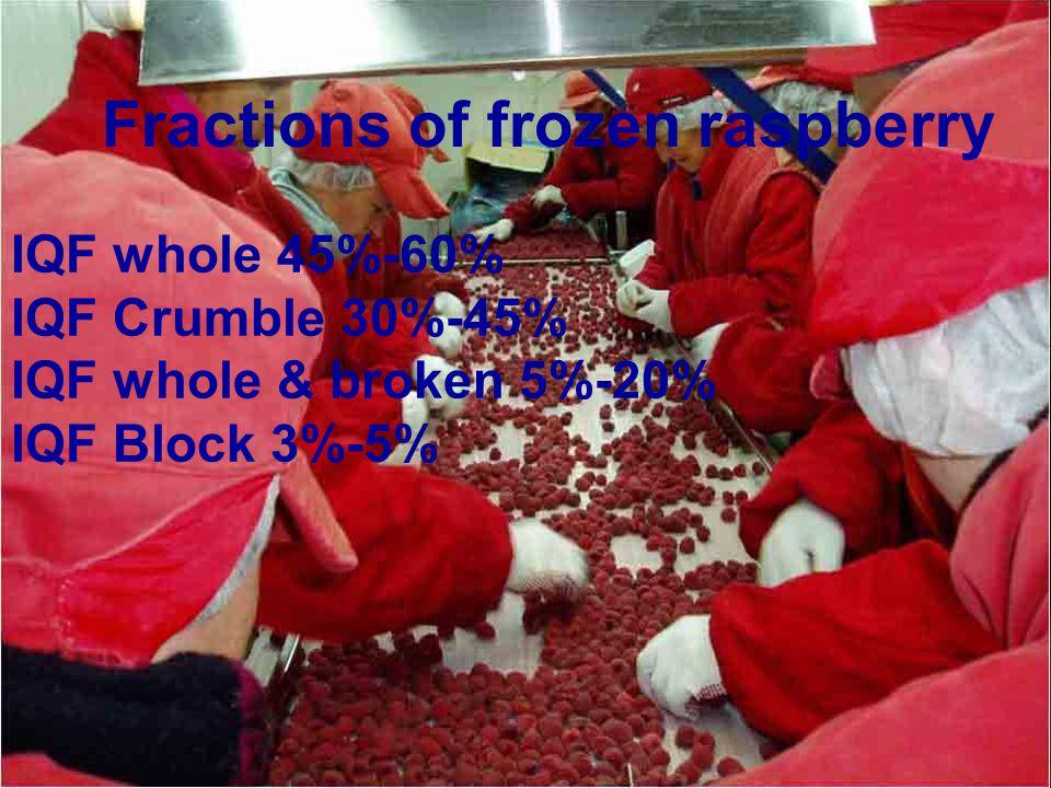 Fractions of frozen raspberry