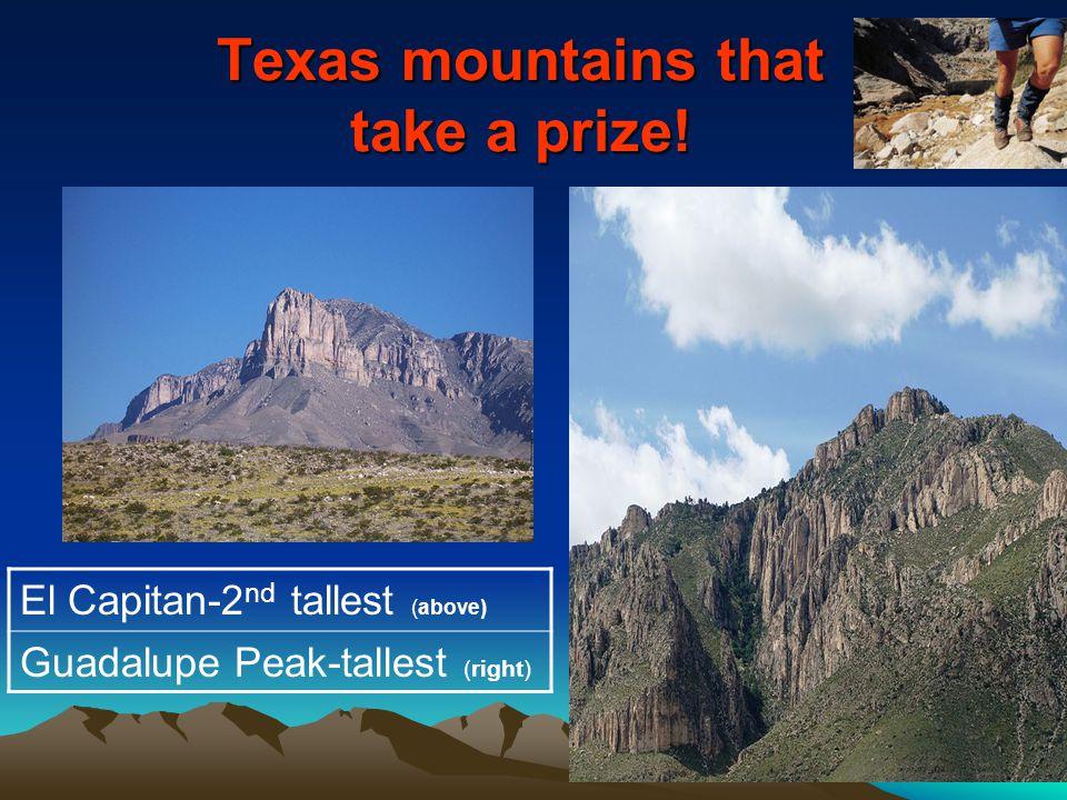 Texas mountains that take a prize!