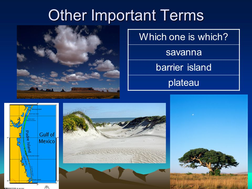Other Important Terms Which one is which savanna barrier island