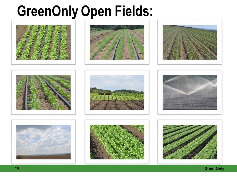 GreenOnly Open Fields: