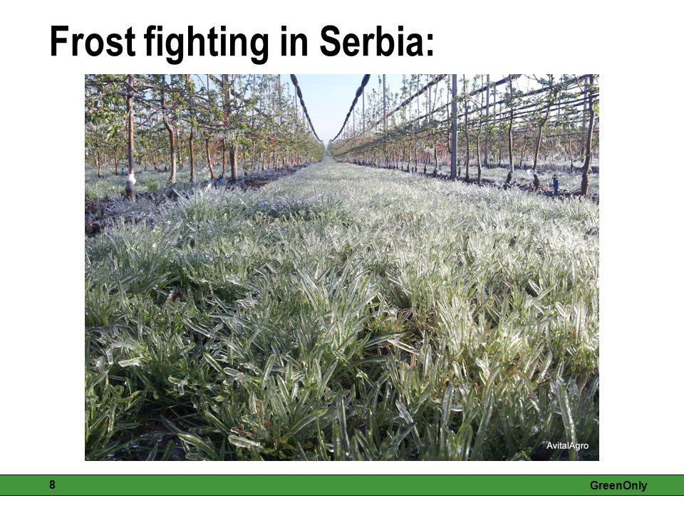 Frost fighting in Serbia:
