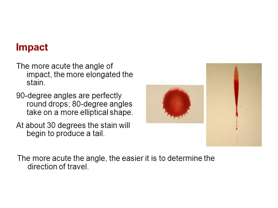 Impact The more acute the angle of impact, the more elongated the stain.