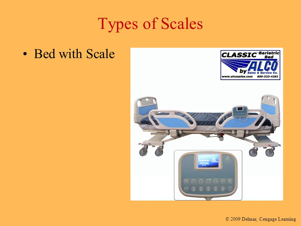 Types of Scales Bed with Scale