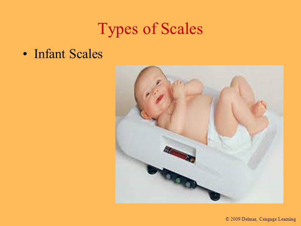 Types of Scales Infant Scales