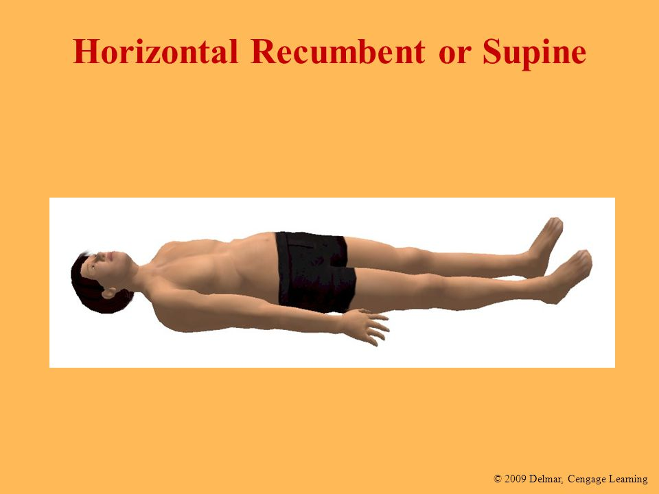 Horizontal Recumbent or Supine