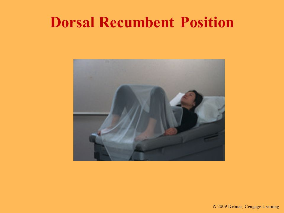 Dorsal Recumbent Position