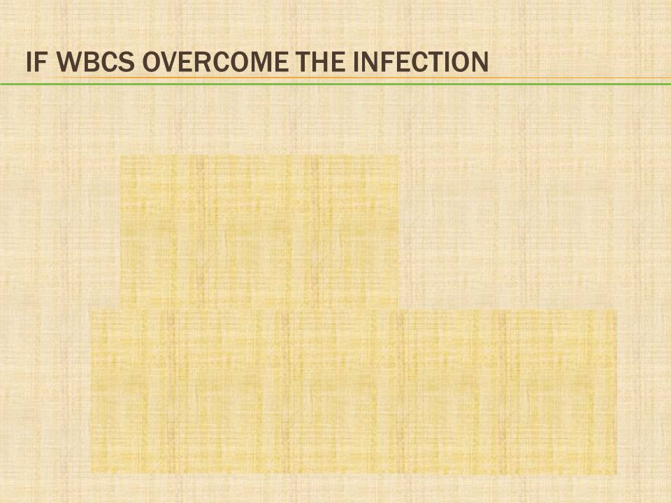 If WBCs Overcome the Infection