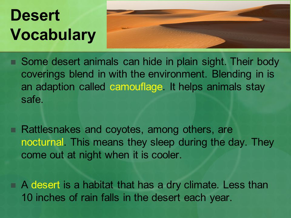 Desert Vocabulary
