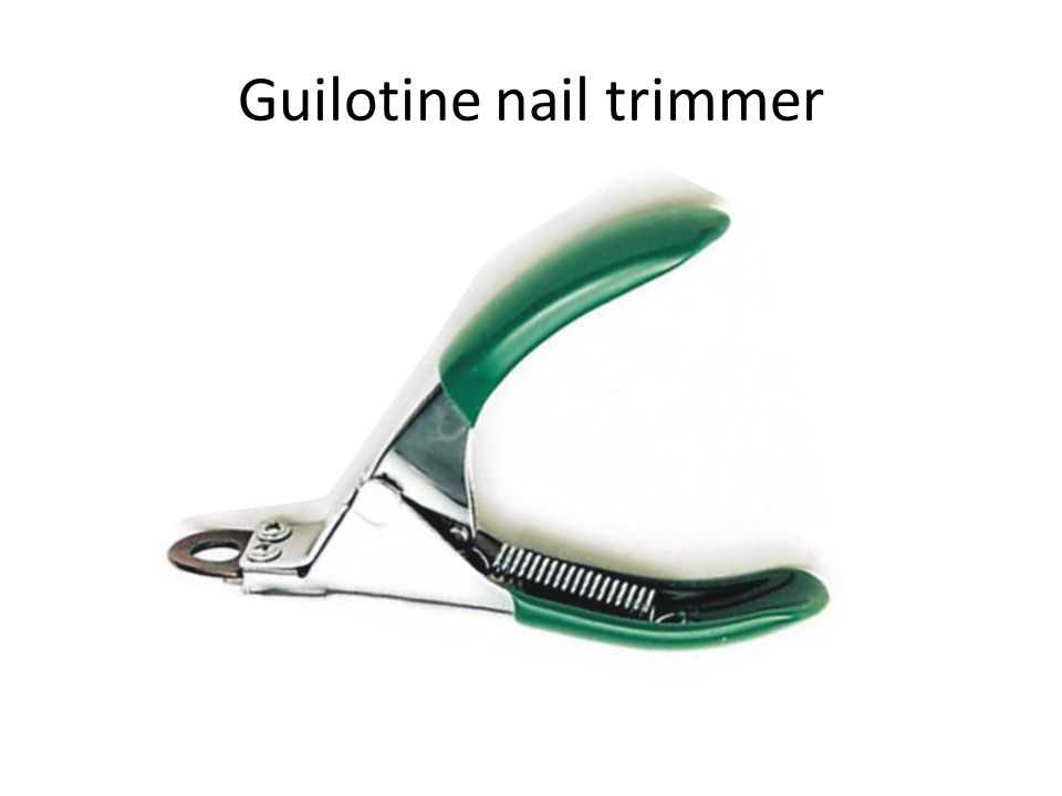 Guilotine nail trimmer