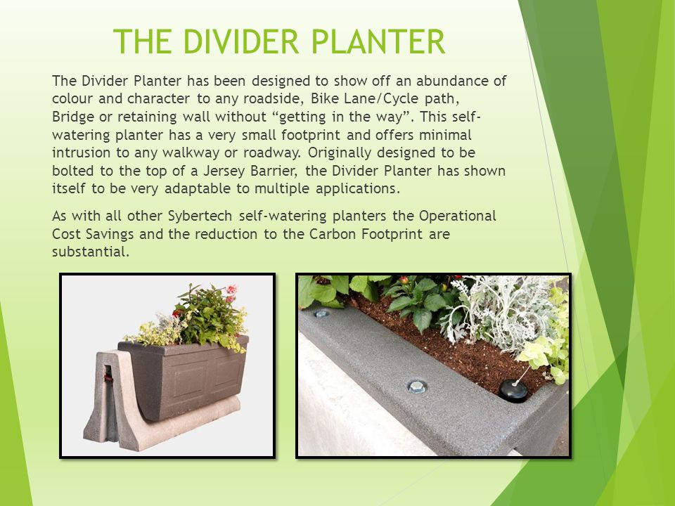 THE DIVIDER PLANTER