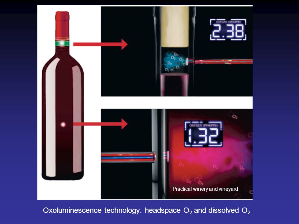 Oxoluminescence technology: headspace O2 and dissolved O2