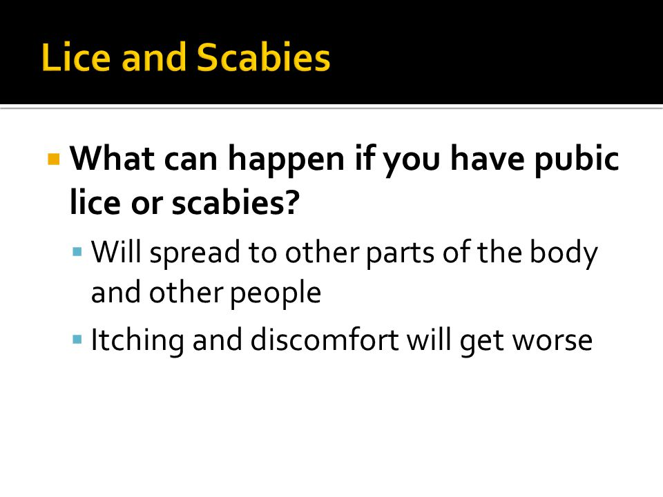 Lice and Scabies What can happen if you have pubic lice or scabies