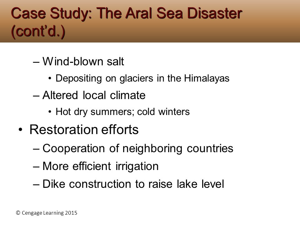 Case Study: The Aral Sea Disaster (cont'd.)