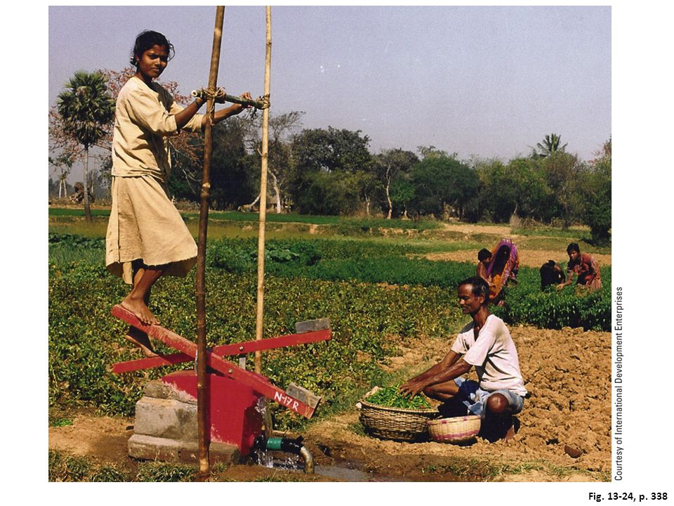 Figure 13-24: Solutions. In areas of Bangladesh and India, where water tables are high, many small-scale farmers use treadle pumps to supply irrigation water to their fields.