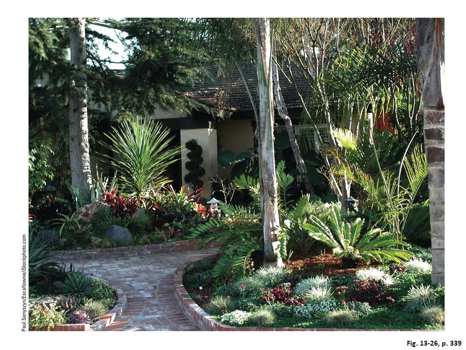 Figure 13-26: This yard in Encinitas, a city in a dry area of southern California (USA), uses a mix of plants that are native to the arid environment and require little watering.