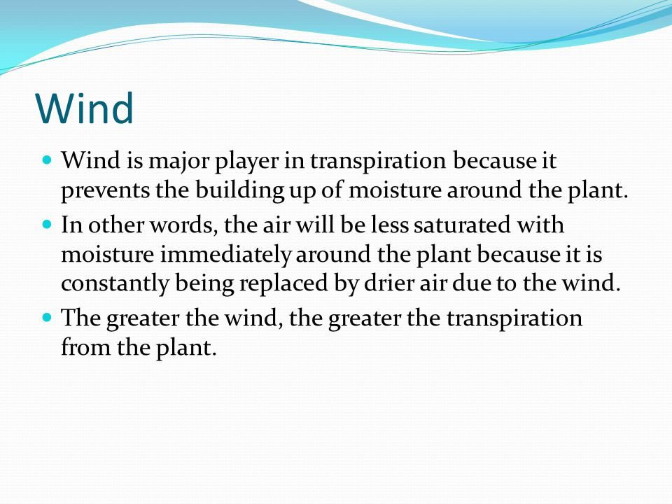Wind Wind is major player in transpiration because it prevents the building up of moisture around the plant.